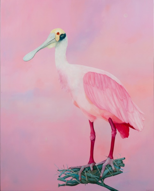 """Thomas Frontini, Spoonbill 2, 2015, Oil on Canvas, 45"""" x 36"""", $5,000"""